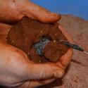 Methode Mix tandoori chenevis