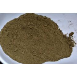 farine d'anodonte