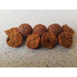 Bouillette Océan Exo Spices