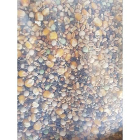 Mélange de graines