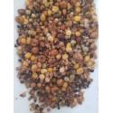 Mélange de graines cuites carpe